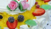 Mimosa con frutta, charlotte, profitteroles, millefoglie, saint honorè, tiramisù classico, nutella e mascarpone o alla frutta, crostate di frutta sono solo alcune delle creazioni della Pasticceria La Mimosa. E inoltre, […]